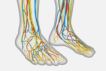nerve related foot care in steele creek nc